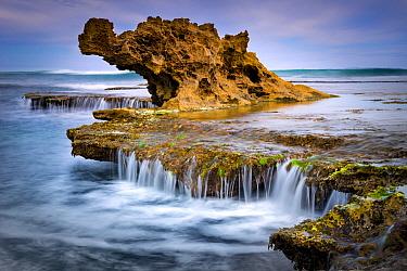 Coastal rock formation, Dragon Head Rock, Mornington Peninsula, Victoria, Australia
