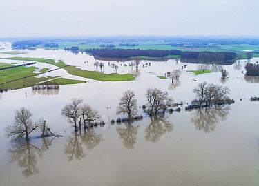 High water during winter, Ijssel River, Gelderland, Netherlands