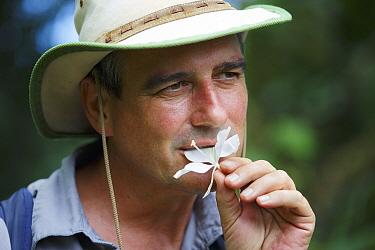Botanist, Dr. Anton Weissenhofer, botanist eating flower in tropical rainforest, Golfito, Costa Rica