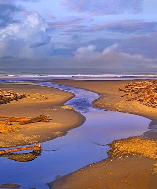 Kalaloch Beach, Olympic National Park, Washington