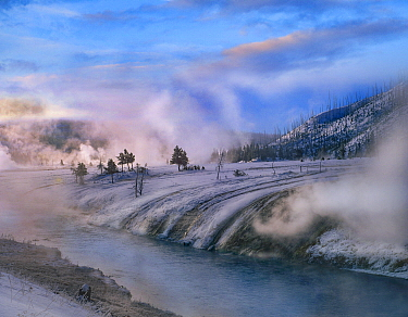 Geysers along river in winter, Yellowstone National Park, Wyoming