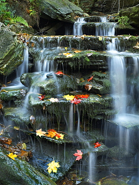Cascades, Kitchen Creek, Ricketts Glen State Park, Pennsylvania