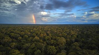 Rainforest and rainbow, Manu National Park, Peru