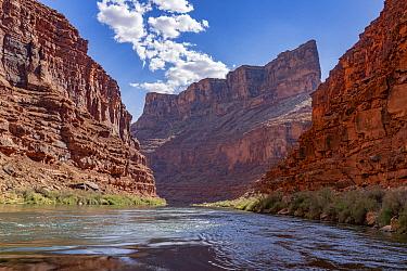 Limestone cliffs, Marble Canyon, Colorado River, Grand Canyon National Park, Arizona