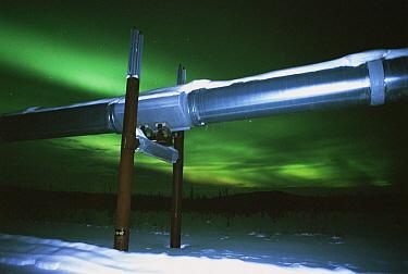 Aurora borealis over pipeline, Haul Road, Dalton Highway, Alaska  -  Matthias Breiter
