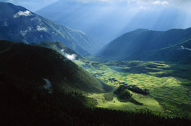 Tibetan village and agricultural fields in Yunnan Snub-nosed Monkey (Rhinopithecus bieti) habitat, Tibet  -  Xi Zhinong