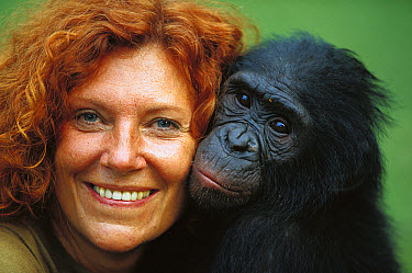 Bonobo (Pan paniscus), with Claudine Andre, manager, ABC Sanctuary, Democratic Republic of the Congo  -  Cyril Ruoso
