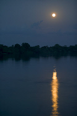 Sun reflecting on water around Mbandaka, Democratic Republic of the Congo  -  Cyril Ruoso