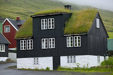 Sod-roofed house on Streymoy Island, Faroe Islands  -  Cyril Ruoso