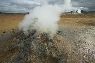 Steaming solfatare or fumarole, geothermal activity, Namafjall, Iceland  -  Cyril Ruoso