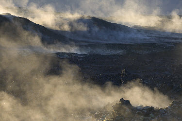 Steaming lava field still hot after the last eruption in 1984, Iceland  -  Cyril Ruoso