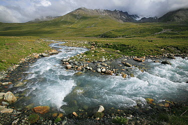 River flowing through steppe, Kyrgyzstan  -  Cyril Ruoso