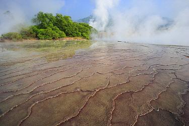 Bacterial mats, Bukit Barisan Selatan National Park, Sumatra, Indonesia  -  Cyril Ruoso
