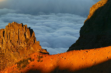 Panoramic view over the clouds from Pico Ariero, Madeira  -  Cyril Ruoso
