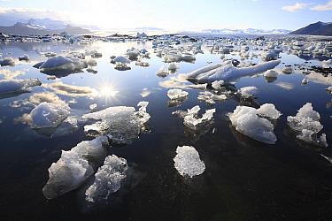 Jokulsarlon Lagoon in spring, Iceland  -  Cyril Ruoso