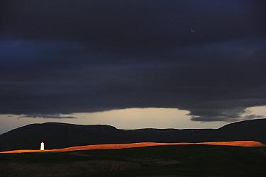 Lighthouse on Aedey Island, Iceland  -  Cyril Ruoso