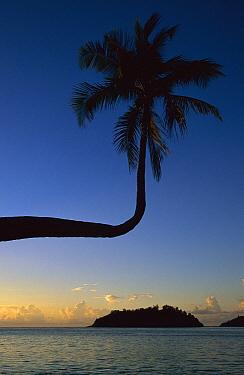 Sainte Anne Resort and Spa, Seychelles  -  Richard Du Toit