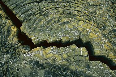 Close-up of cracked basaltic lava flow, Piton De La Fornaise, Reunion Island  -  Richard Du Toit