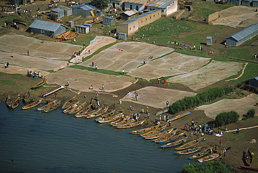 Fishing nets and boats, Karungo, Lake Victoria, Kenya