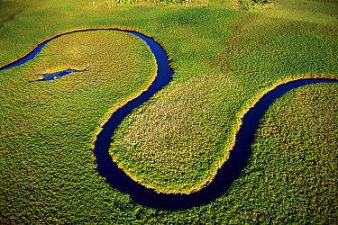 Nqoga Channel, winter rainy season, Okavango Delta, Botswana
