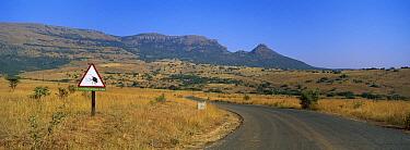 Road, Itala Game Reserve, South Africa  -  Richard Du Toit