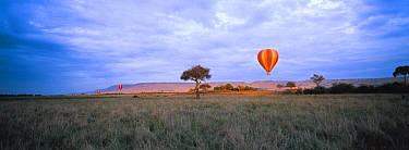 Hot air balloon flying over Masai Mara National Reserve, Kenya