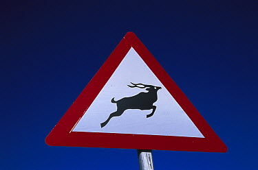 Beware of animals road sign, South Africa  -  Richard Du Toit