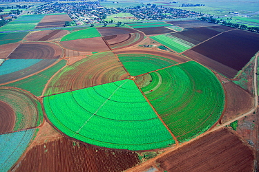 Aerial view of agricultural fields, Gauteng, South Africa