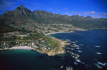 Aerial view of Clifton Beach and 12 Apostles Mountains, Cape Peninsula, South Africa  -  Richard Du Toit