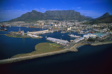 Aerial view of waterfront, Cape Town, South Africa  -  Richard Du Toit