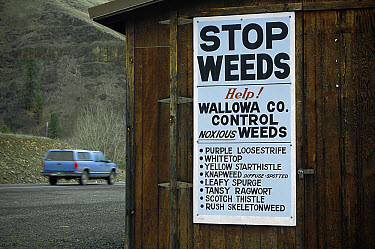 Weed control signage along Highway 82, Wallowa County, listing introduced plants that have become invasive weeds, Oregon  -  Michael Durham