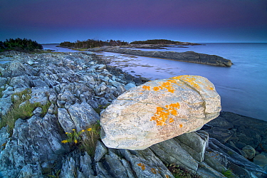 Boulder and shore, Nova Scotia, Canada