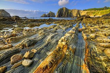 Petrified quartzite, Playa del Silencio, Asturias, Spain