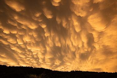 Cumulonimbus mammatus clouds at sunset, Haute-Savoie, France