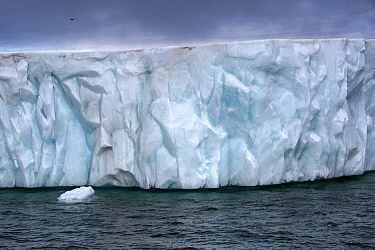 Iceberg, Franz Josef Land, Russia