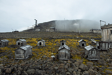 Abandoned dog kennels, Franz Josef Land, Russia