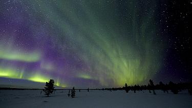 Aurora borealis in winter, Lapland, Finland