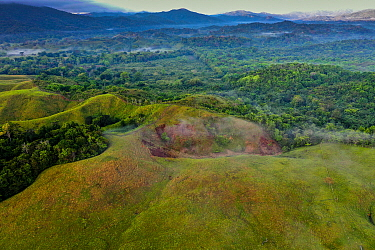 Deforested pasture land and semi-deciduous tropical moist rainforest, Mamoni Valley, Panama