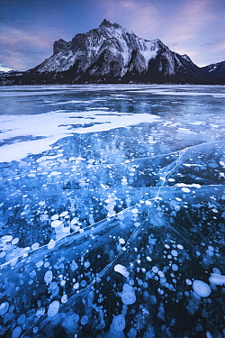 Methane bubbles get trapped under the frozen ice, Abraham Lake, Alberta, Canada