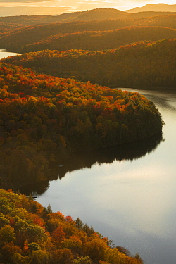 Pond and deciduous forest in autumn at sunset, northern Vermont