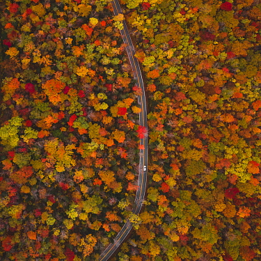 Car traveling on paved road in autumn forest, central Vermont