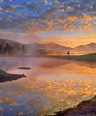 Sky reflected in creek, Alum Creek, Absaroka Range, Yellowstone National Park, Wyoming