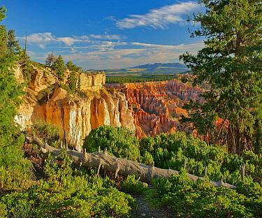 Hoodoos, Sunset Point, Bryce Canyon National Park, Utah