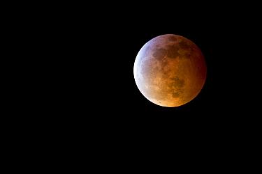 Super blood moon, Newport, Oregon