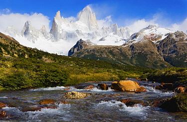 Creek below Mount Fitzroy, Los Glaciares National Park, Patagonia, Argentina