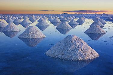 Salt mounds awaiting collection, Salar de Uyuni, Bolivia