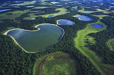 Wetlands at end of rainy season, South America