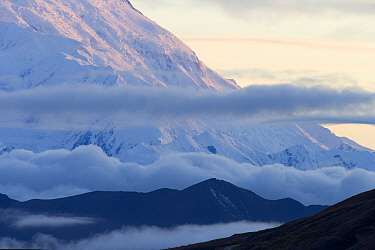 Fog and clouds surrounding Mount McKinley, Denali National Park, Alaska