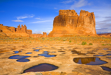 Sandstone rock formations and water pools, Courthouse Towers, Arches National Park, Utah
