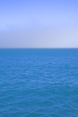 Fog over ocean, South Georgia Island